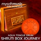 Shruti Box Journey 04