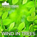 Soothing Wind Sounds